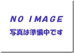 NO IMAGE データ